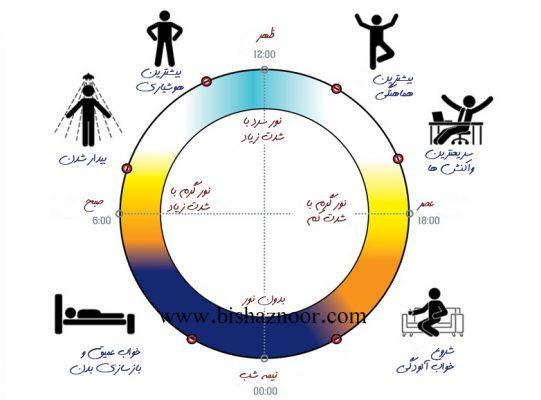 نورپردازی انسان محور و ساعت بدن