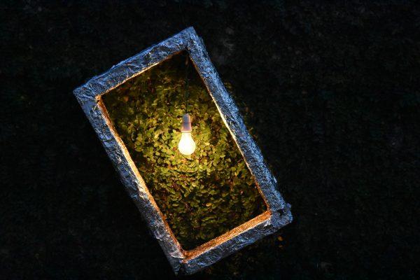 نورپردازی چیست